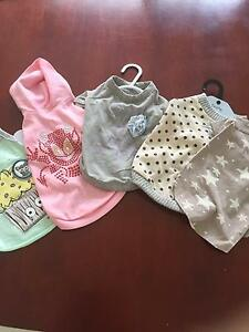 Lots of good quality puppy/small dog outfits Warner Pine Rivers Area Preview