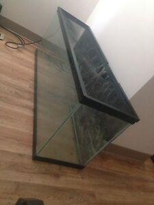 40g fish tank