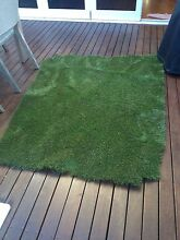 Fake grass Balmain Leichhardt Area Preview