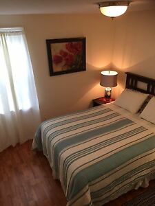 Downtown Furnished 2 BDRM Feb-May