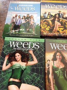 DVD  weeds seasons
