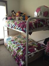 Harvey Norman Single Bunk Bed Forster Great Lakes Area Preview