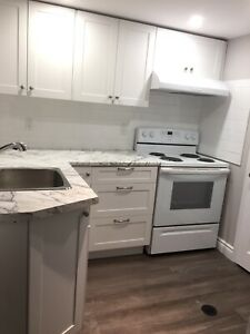 Newly renovated 2 bedroom basement apt separate entrance