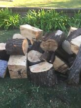 Free firewood North Epping Hornsby Area Preview