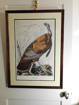 Audubon Giclee Print Plate 1. Wild Turkey Framed 1 Framed Giclee Print