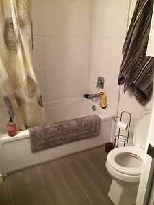 Roommate wanted immediately