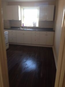 Large one bedroom apartment for rent $1025