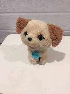 Toy Puppy (Item No. 475) Pakenham Cardinia Area Preview