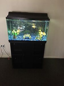 30 Gallon Aquarium/Fish Tank for Sale
