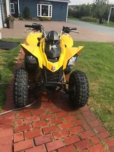 250 can am quad