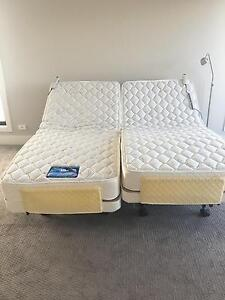 PLEGA Health Electrical Bed- AS NEW Hampton Bayside Area Preview