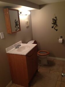 Basement suite for rent Strathcona County Edmonton Area image 4