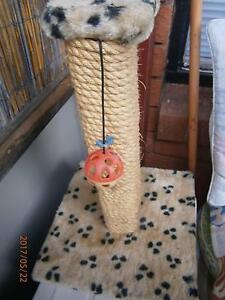 New Cat scratching pole Leichhardt Leichhardt Area Preview