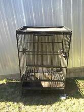 Large bird cage Singleton Singleton Area Preview