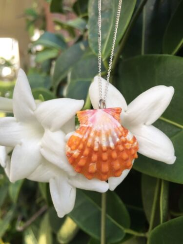 Hawaiian Sunrise Shell Necklace Sterling Silver Chain.