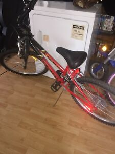 18 Speed, Girls Mountain Bike