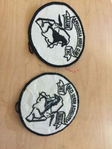 appaloosa horse  club vintage patch, new old stock, 1970