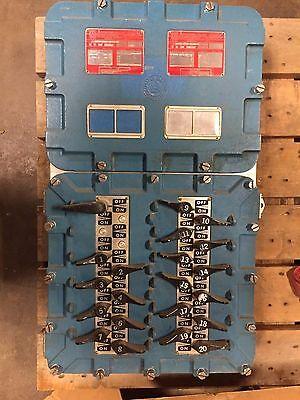 Appleton Electric D2P Series Enclosed Panelboard For Hazardous Locations Div. 2