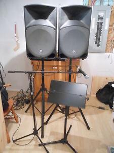 Kit de son 2 haut parleurs, mixeur 16 in et micro