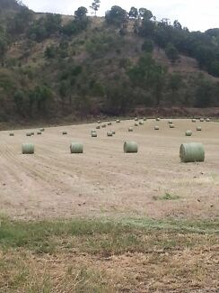 Hay for sale Gatton area Upper Tenthill Lockyer Valley Preview