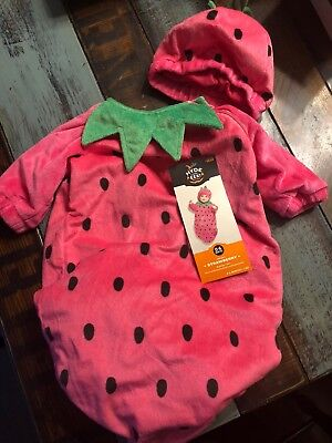 Bunting Halloween Costumes (NWT Soft Plush Infant Baby Bunting Pink Strawberry Halloween Costume~ 0-6)