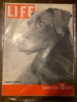 Life Magazine - Labrador Retriever - December 12, 1938 -(M21A) Life Labrador Retriever