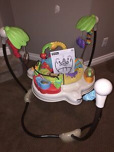 Fisher Price Jumperoo - Like New!