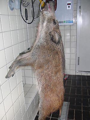 Wild, Fleisch, Wildschwein, Natur Bio, Smoken/Grillen , 3,35 kg