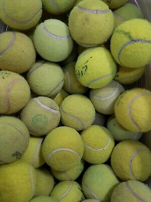 30 Used Used Tennis Balls For Dogs... Very Low Price !