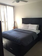 Wooden queen bed almost brand new (purchased in July 2015) Drummoyne Canada Bay Area Preview