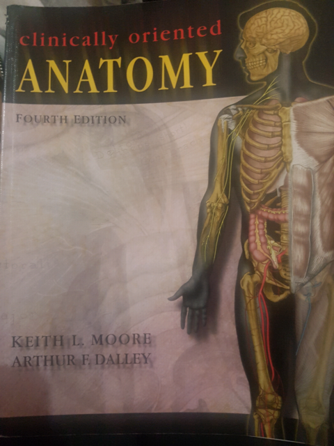 Clinically Oriented Anatomy 4th Edition Textbooks Gumtree Australia