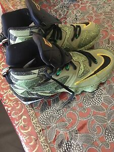 Lebron 13 mint condition