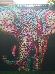Huge elephant canvas art  print 165 x 165 cm Bentley Canning Area Preview