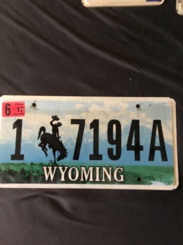 US Kennzeichen Nummernschild License Plate USA WYOMING 🇺🇸7149A