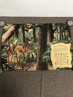 Vintage Pontiac Motor Print Ad Poster Indian Trails
