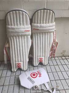 Hunts County Cricket Batting Pads Woollahra Eastern Suburbs Preview