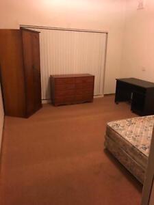Large sunny bedroom furnished for rent in Hurstville
