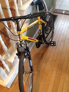 """24""""  Mountain Bike ~ Black Canyon"""