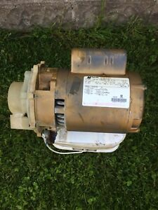 1/2 HP pool pump motor