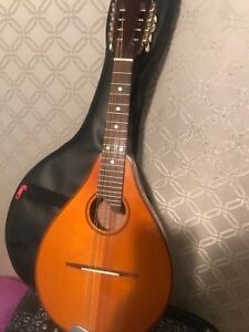 Small guiter