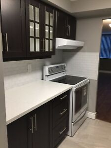 2 Bed Room Condo Apartment available for rent