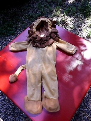 Lion Halloween costume, 12-24 months, great condition, so cute. ()