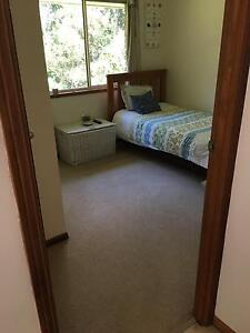 Room to rent Tewantin Noosa Area Preview