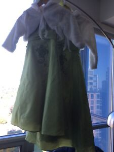 Girls Dresses - Mint Condition; perfect for the Holidays!
