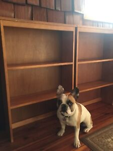 2 Solid Maple Bookcases