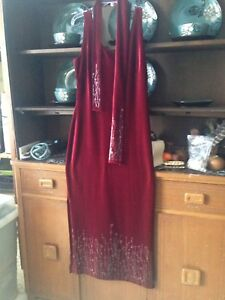 Beautiful velour stretch gown.