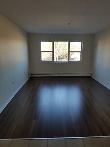 BEST BANG FOR YOUR BUCK SPRYFIELD RENOVATED 2 BDRM DECEMBER 1ST