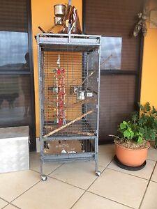 Large bird cage Attunga Tamworth Surrounds Preview