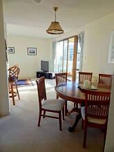 Room in penthouse apartment on Glenelg beachfront for 1 month Glenelg Holdfast Bay Preview