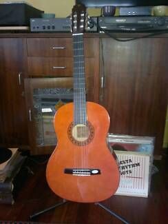 Valencia Clasical guitar with soft case TC14